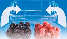 Tarrina, Cesta para fruta fabricada en Pet