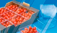 Cestas para Fruta MAXIPACK